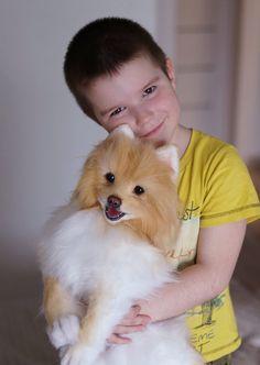 Pomeranian Spitz Pet replica made to order Pet portrait | Etsy Realistic Stuffed Animals, Pet Puppy, Soft Sculpture, Pomeranian, Pet Portraits, Pet Toys, Masters, Fur, Puppies