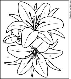 Lily - Printable Color by Number Page Glass Painting Designs, Stained Glass Designs, Stained Glass Patterns, Mosaic Patterns, Painting Patterns, Lily Painting, Fabric Painting, Landscape Art Quilts, Stencil Printing