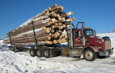 Truck with Logs #heavyhauling