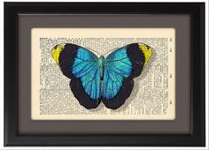 Blue Butterfly illustration Art Print, Dictionary Pages poster, beautiful Gift, Wall Art, Home Dorm decor, Book Pages, CODE/157 by Natalprint on Etsy https://www.etsy.com/listing/195427859/blue-butterfly-illustration-art-print