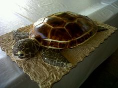 Sea Turtle Cake  - This cake was made out of Mango Pound Cake.  The head was made with RKT´s.  The rest of the decoration is fondant.  The shell is hand painted.