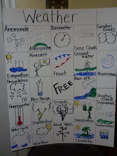 Science Notebooking with bingo boards