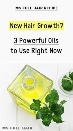 New Hair Growth? Use These 3 Powerful Combos Right Now - Ms Full Hair Hair Regrowth Shampoo, Natural Hair Regrowth, Natural Hair Loss Treatment, Natural Hair Styles, Hair Straightening, Olive Oil Hair Growth, New Hair Growth, Hair Growth Tips, Growth Oil