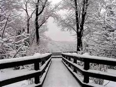 Image Search Results for black and white landscape photography