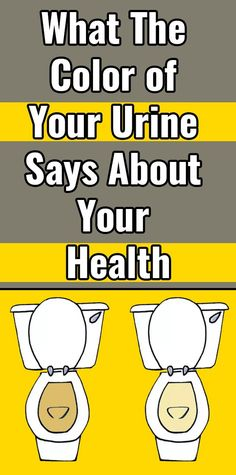 The color of your urine From clear to peachy-pink to greencan indicate Everything into the presence of kidney stones from hydration status. Below, you'll find what it states on your and every potential pee color Body, in accordance with nutritionists. Natural Home Remedies, Herbal Remedies, Health Remedies, Kiwi Smoothie, Smoothies, Bodybuilder, Color Of Urine, Health Benefits, Health Products