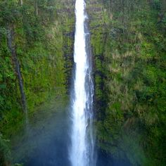 """'Akaka Falls Hilo, HI I call this the """"postcard shot."""" Akaka Falls resides in the appropriately named Akaka Falls State Park, which is just a short car ride from the town of Hilo on the Big Island. Park the car for a. Hawaii Vacation, Oahu Hawaii, Hawaii Travel, Semester At Sea, Island Life, Island Park, Big Island Hawaii, Hawaiian Islands, The Great Outdoors"""