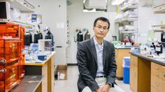 MacArthur 'genius' grant winner creates artificial leaves that photosynthesize