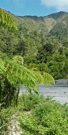 Mt.Matthew and Orongorongo River valley