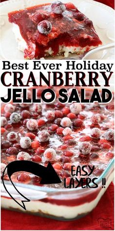 Cranberry Jello Salad made with 3 festive, delicious layers of pretzels, pudding, cranberries & Jello! Impressive, easy cranberry recipe to add to your holiday meal. #jello #cranberry #salad #holidays #dinner #Christmas #Thanksgiving #jellosalad #whippedcream #cranberries #recipe from BUTTER WITH A SIDE OF BREAD Cranberry Jello Salad, Cranberry Recipes, Holiday Recipes, Christmas Recipes, Jello Recipes, Fudge Recipes, Dessert Recipes, Drink Recipes, Salad Recipes