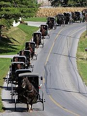 Amish buggies...on the right