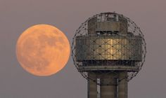 Supermoon will light up the sky this week