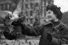 Elizabeth Taylor: Violet-eyed Hollywood queen