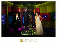 FLORIDA AQUARIUM, www.stepintothelimelight.com, wedding, wedding photography, bride and groom, wedding day, aquarium wedding, portrait, lace, wedding dress, Tampa, Florida, Florida wedding