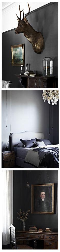 Ellis House. Interiors. Taxidermy. Lighting. Grey. Purple. brown. www.naturalhistory.co.uk