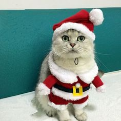 Clothing for Cats Santa Pet Dog Costume Warm Dog Cat Christmas Hoodie Coat Autumn Clothes Chihuahua Yorkshire Poodle 25