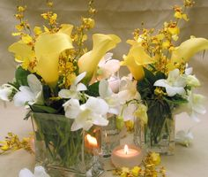 This is a cube vase floral arrangement that features calla lilies, oncidium orchids and dendrobium orchids in a yellow and white color scheme.  See our entire selection at www.starflor.com.  To purchase any of our floral selections, as gifts or décor, please call us at 800.520.8999 or visit our e-commerce portal at www.Starbrightnyc.com. This composition of flowers is generally available for same day delivery in New York City (NYC). SQ034