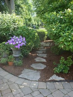 need some stepping stones like these.