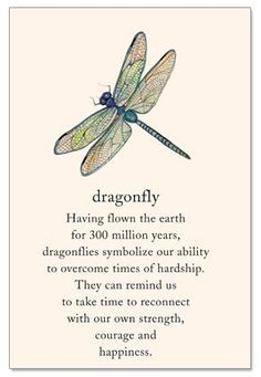 Dragonfly Support & Encouragement Card