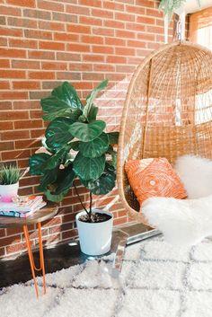A Mid-Century Sunroom Makeover: Inspiration | Dream Green DIY (Photo: Andrea Pesce)