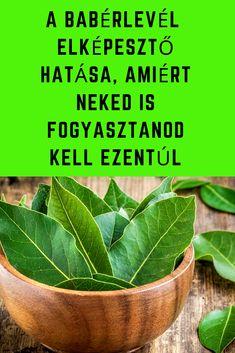 A babérlevél 7 elképesztő hatása, amiért neked is fogyasztanod kell ezentúl Doterra Oils, Wealth, Anna, Medical, Herbs, Plants, Life, Medicine, Herb