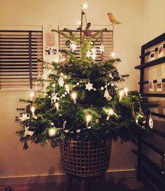 Voor vertrek naar Parijs voor de schoonouders nog even wat kerstsfeer in huis gehaald. #xmas by sabineburkunk