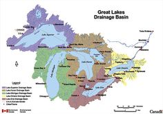 Great Lakes Ecosystems Threatened by Food Scarcity | EcoWatch