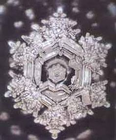 "Water CRYSTALS with Masaru EMOTO ""HAPPINESS"" in American water"