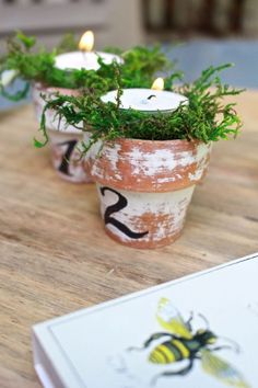 Citronella Candles in Mini Terra Cotta Clay Pots. Mini terra cotta pots, distressed and numbered in French script. Pots D'argile, Herb Pots, Terra Cotta, Diy Planters, Planter Pots, Mini Vasos, Mushroom Decor, Terracotta Flower Pots, Painted Clay Pots