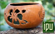 Google Image Result for http://www.ipufarm.com/images/custom_gourd_art.jpg