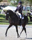 Beautiful 10-year-old 16.3 hand FEI Oldenburg Gelding. Shown through Prix St Georges, schooling Intermediare-I. Excellent temperament and easy to ride making for a good AA/JR/YR mount!  $75,000