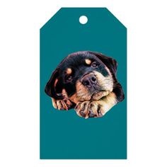 Rottweiler Puppy Love Rott Dog Canine German Breed Gift Tags - dog puppy dogs doggy pup hound love pet best friend