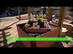 There is a case to be made on what material one should use to build a raised bed garden and Joshua from Botanic Garden at Georgia Southern University eloquen. Raised Garden Bed Kits, Raised Beds, Car Tracks For Kids, Canopy Cover, Landscape Edging, She Sheds, Garden Borders, Hexagon Shape, Sandbox