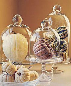 autumn decor pumpkins under glass bells stands, events, home, wedding, parties fall fetes
