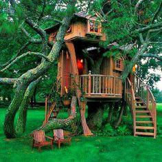 Spectacular Treehouse!