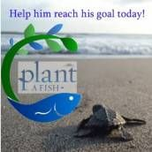 From the mangrove lined shores of Florida, to the sandy beaches of El Salvador, Plant A Fish empowers local communities to take action and restore native ecosystems. As Earth Day 2012 approaches, Plant A Fish hopes to inspire you to make a difference in your community. Using timeless ecological principals of ...
