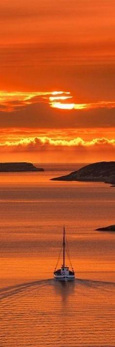into the orange sunset