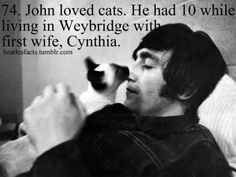 johns love for cats