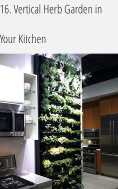 Vertical herbs in kitchen