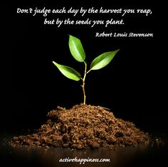 don't-judge-each-day-by-the-harvest-you-reap-but-by-the-seeds-you-plant