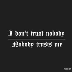 Look what you made me do|Taylor Swift| I don't trust nobody and nobody trusts me