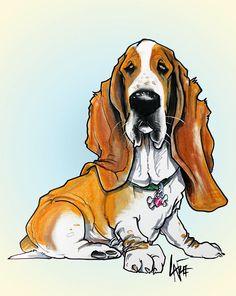 Basset Hound #14 Drawing  - Basset Hound #14 Fine Art Print