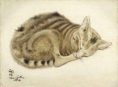 sleeping cat - by Tsuguharu Foujita