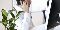 Une plante verte au bureau augmente votre productivité de 15�