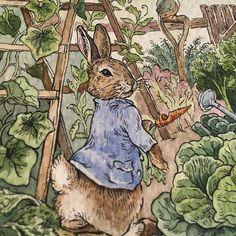 Peter Rabbit Painting