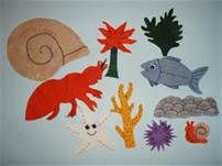 House for Hermit Crab Includes: Hermit Crab, Snail, Starfish, Shell ...