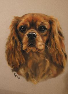 A dog painted by CATARINA WIK in pastel!