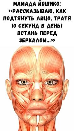 Face Massage, Tips Belleza, Face Art, Up Hairstyles, Biology, Portrait, Facial, Skin Care, Health