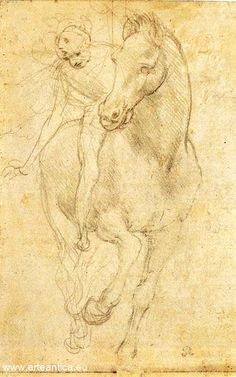 Spostò la velina che proteggeva il secondo disegno. E dovette sedersi perché si sentì quasi svenire. Era, disegnato a sanguigna, il più bel cavallo che Leonardo avesse mai raffigurato. #2BelleSfere