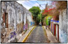 Photo Carraol Images of Mexico City: Tlalpan