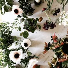 flowers / photo by Aran Goyoaga
